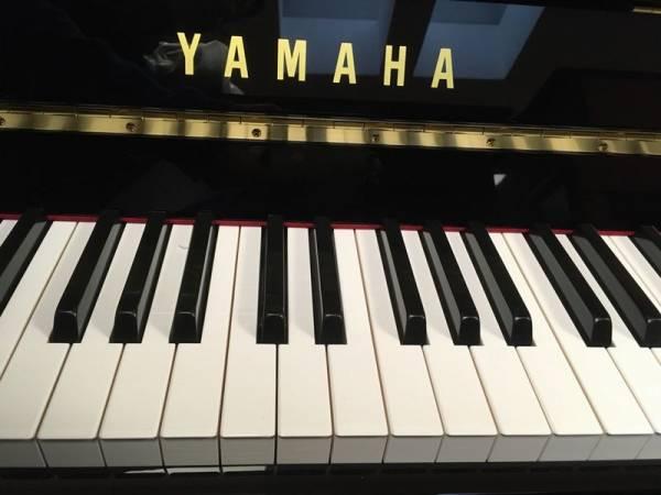 Yamaha B1 Silent mieten