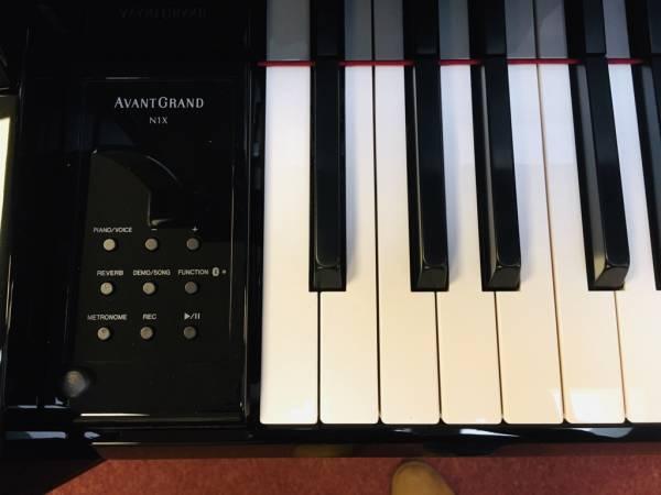 Hybrid Piano kaufen N1X